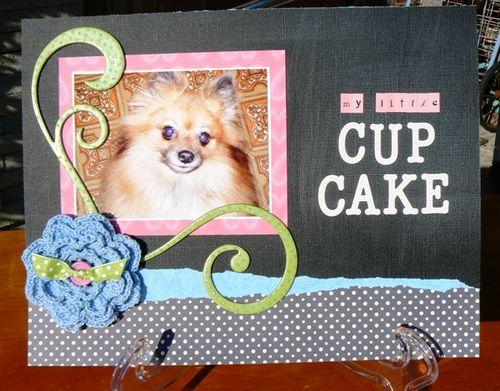 Cupcake-_MLS_+_coredinates