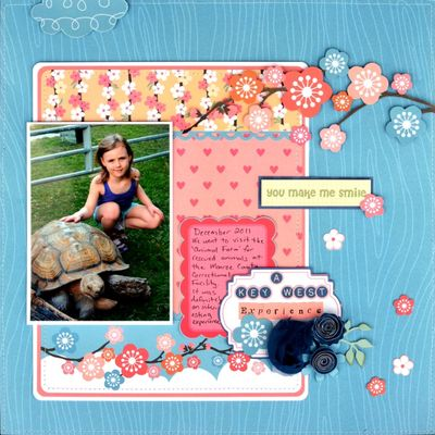MAaron_Aiko_My_Little_Shoebox_Layout